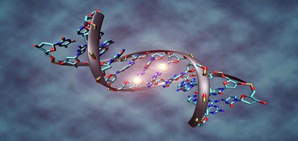methylated_DNA_molecule